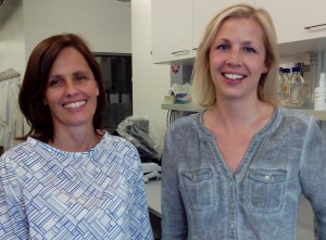 Dr. Sandra Hummel and Dr. Daniela Much are the authors.