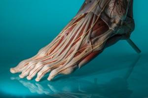 Diabetic Foot Care in Australia
