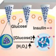 Painless Smart Patch for Diabetes Control, Insulin Delivery